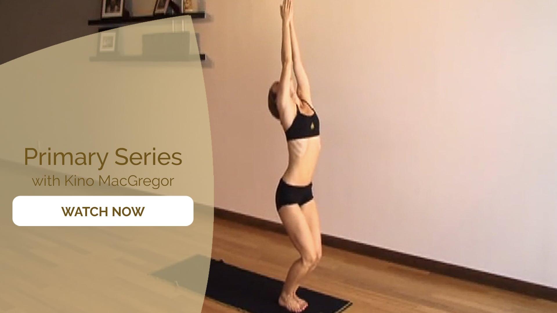 Kino Ashtanga Yoga DVDs   Practice Courses on Omstars