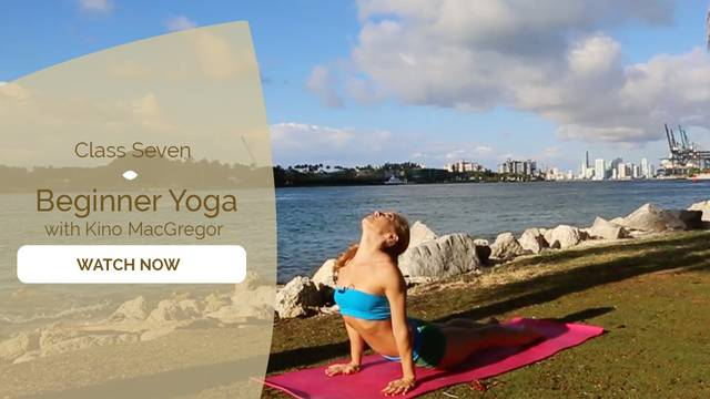 thumbnail image for Just Practice: Sun Salutations, Basic Asana Practice for Beginners