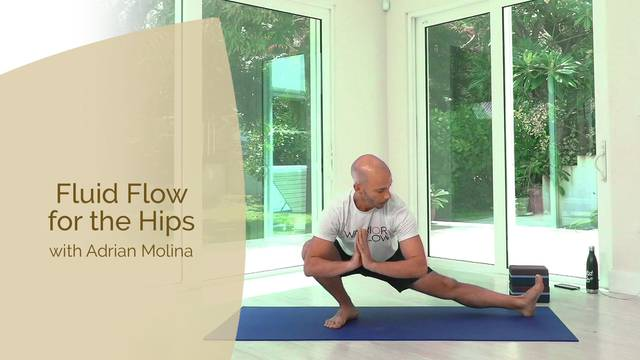 thumbnail image for Warrior Flow Yoga Fluid Hips with Adrian Molina