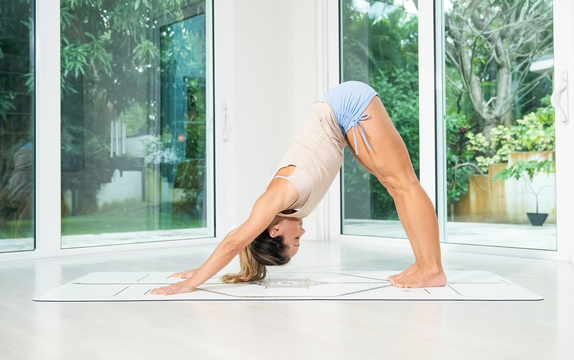 thumbnail image for Class 1—Conditioning—Downward Dog