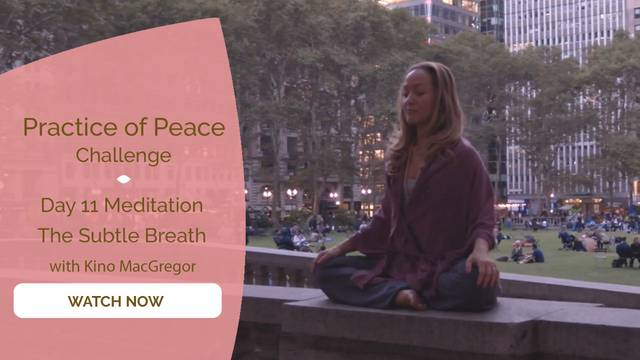 thumbnail image for Day 11 Meditation: The Subtle Breath