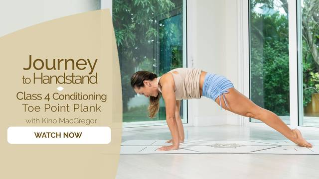 thumbnail image for Class 4—Conditioning—Toe Point Plank