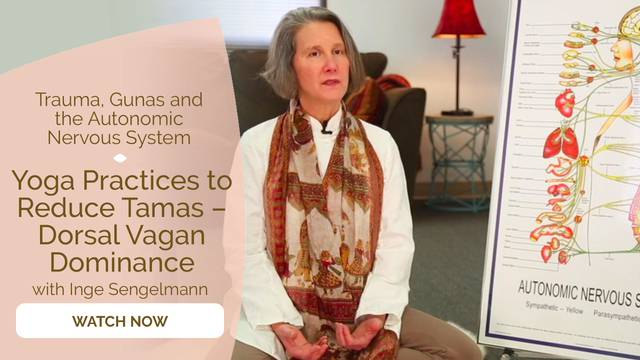 thumbnail image for Yoga Practices to Reduce Tamas – Dorsal Vagan Dominance