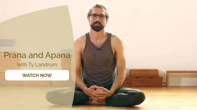 thumbnail image for Prana and Apana