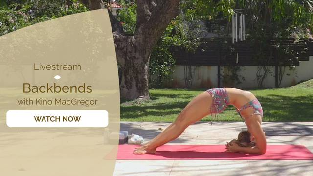 thumbnail image for Backbend Flow with Kino MacGregor