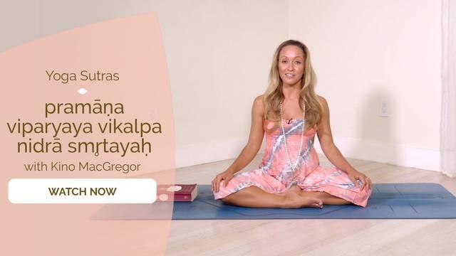 thumbnail image for I.6 Pramana-viparyaya-vikalpa-nidra-smrtayah