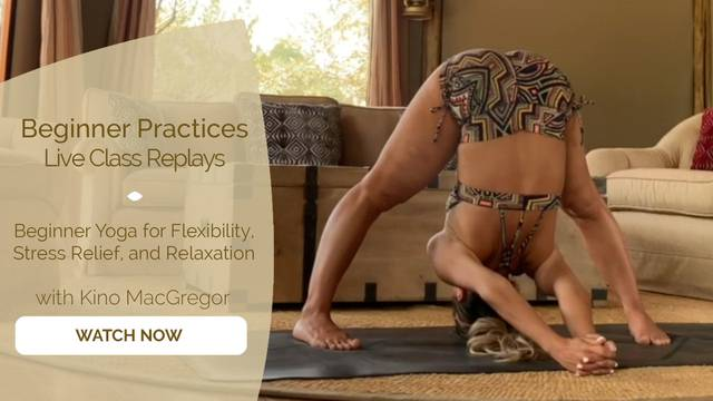 thumbnail image for Beginner Yoga for Flexibility, Stress Relief and Relaxation