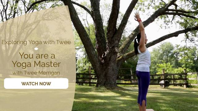 thumbnail image for Day 8 Flow: You Are a Yoga Master with Twee Merrigan