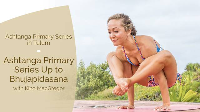 thumbnail image for Ashtanga Primary Series up to Bhujapidasana