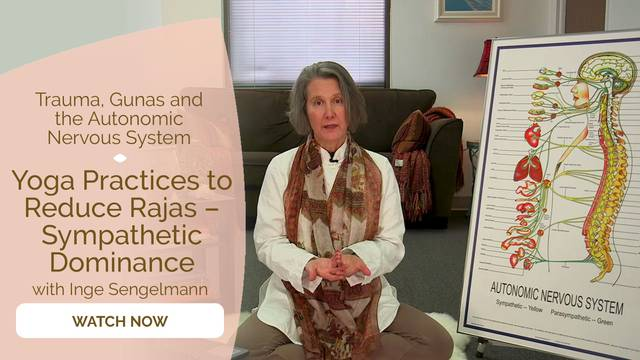 thumbnail image for Yoga Practices to Reduce Rajas – Sympathetic Dominance