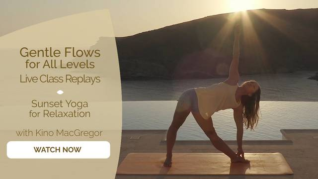 thumbnail image for Sunset Yoga for Relaxation