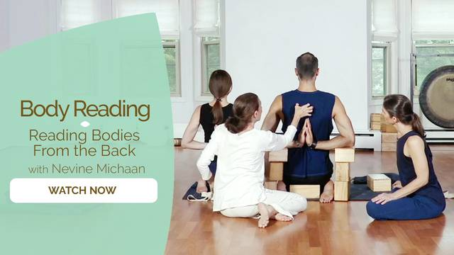 thumbnail image for Reading Bodies from the Back