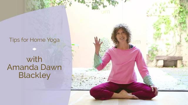 thumbnail image for Amanda Dawn Blackley