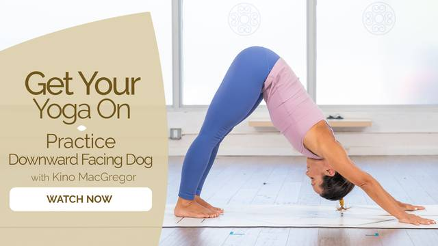 thumbnail image for Practice Downward Facing Dog