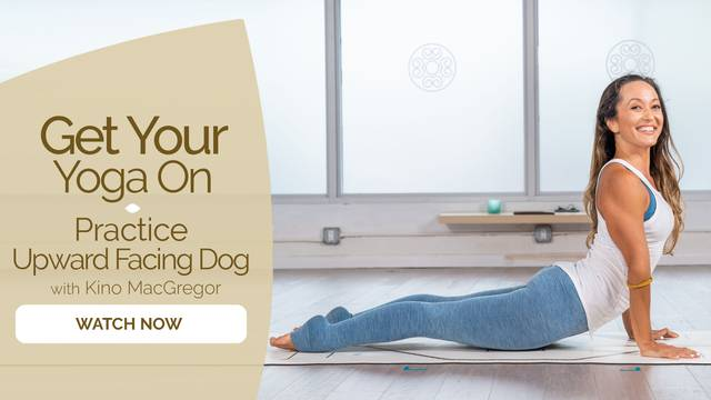 thumbnail image for Practice Upward Facing Dog