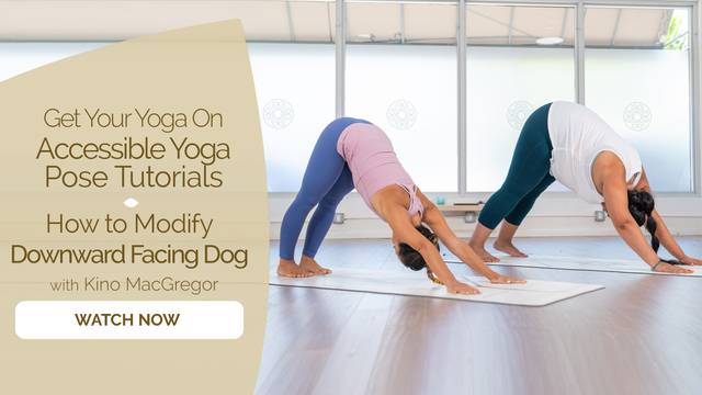 thumbnail image for How to Modify Downward Facing Dog