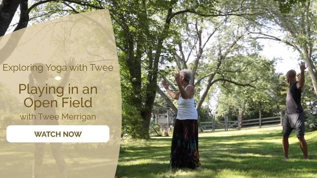 thumbnail image for Playing in an Open Field