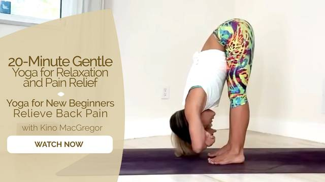 thumbnail image for Yoga for New Beginners - Relieve Back Pain