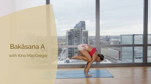 thumbnail image for Bakasana - Crow Pose with Kino