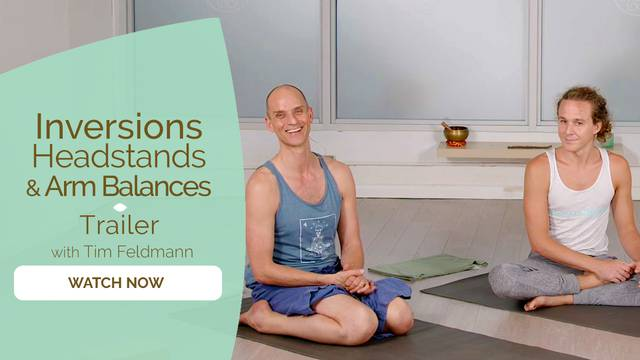 thumbnail image for Inversions, Arm Balances, and Headstands Trailer
