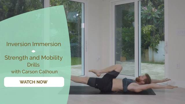 thumbnail image for Strength and Mobility Drills