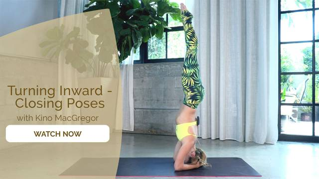 thumbnail image for Day 13 - Ashtanga Primary Series Episode 14 – Closing Poses