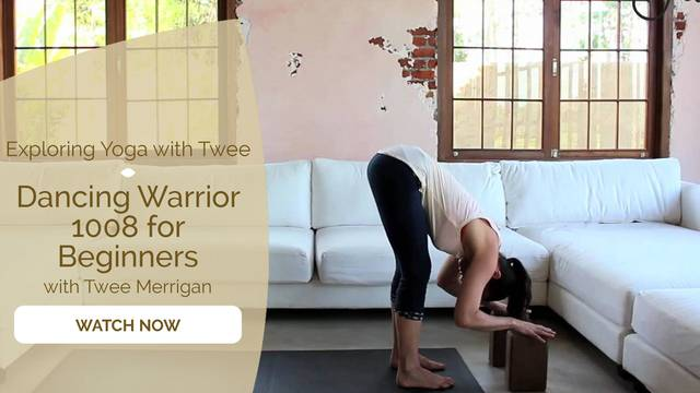thumbnail image for Dancing Warrior 1008 for Beginners