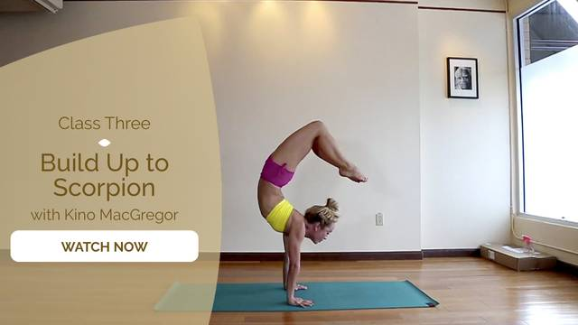 thumbnail image for Yoga for Strength: Build up to Scorpion Handstand with Kino MacGregor