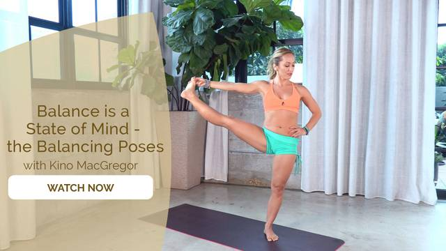 thumbnail image for Day 7 - Ashtanga Primary Series Episode 7 – Balancing Poses