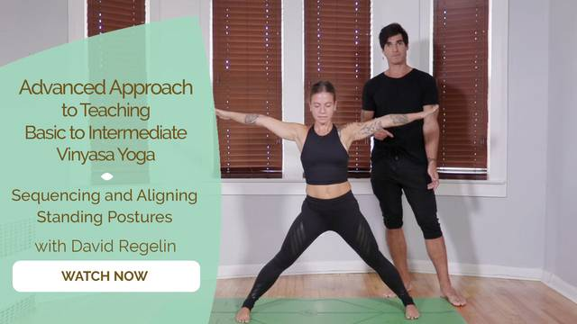 thumbnail image for Sequencing and Aligning Standing Postures