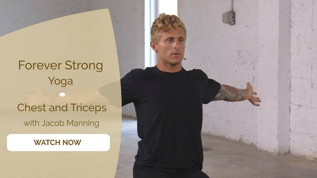 thumbnail image for Chest and Triceps