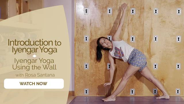 thumbnail image for Iyengar Yoga Using the Wall