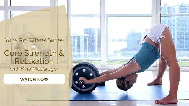 thumbnail image for Yoga Pro Wheel with Kino: Building Strength & Flexibility