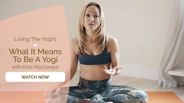 thumbnail image for What It Means To Be A Yogi