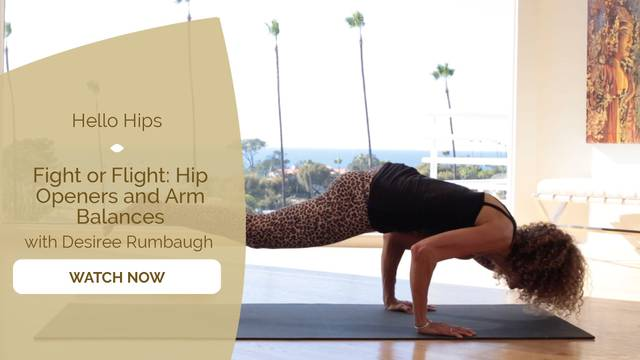 thumbnail image for Fight or Flight: Hip Openers and Arm Balances