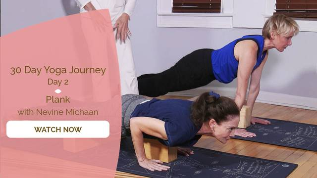 thumbnail image for Day 2 Plank - Nevine Michaan