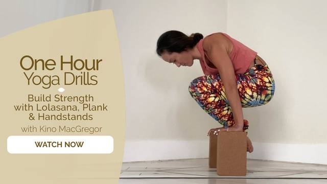 thumbnail image for Build Strength with Lolasana, Plank & Handstands