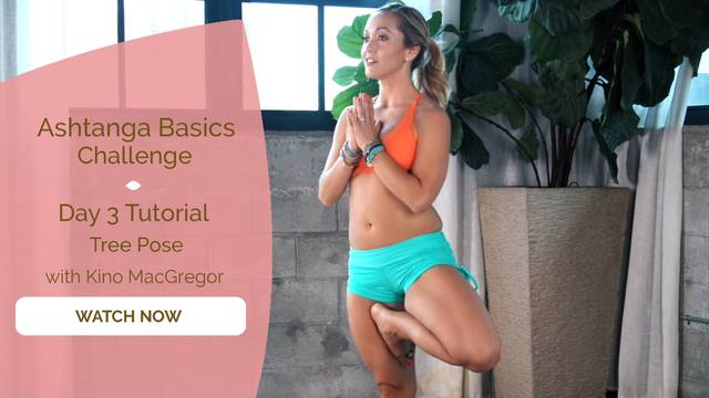 thumbnail image for Day 3 Tutorial - Tree Pose