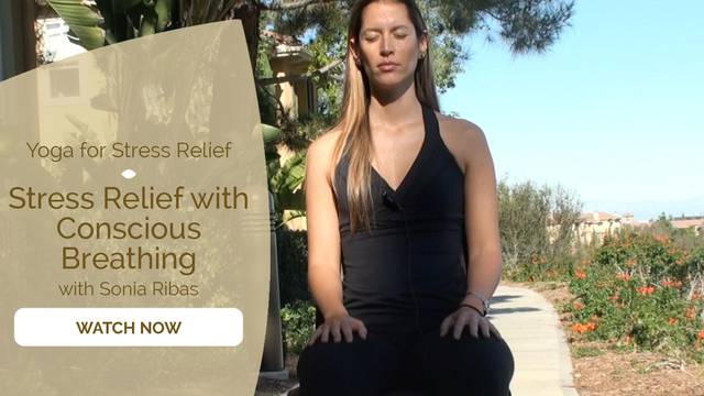 thumbnail image for Stress Relief with Conscious Breathing