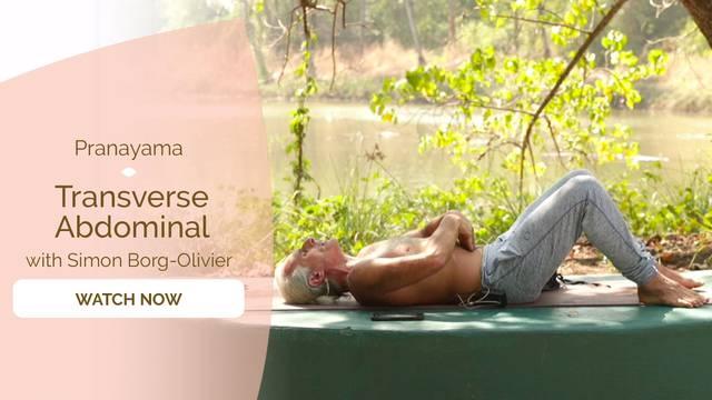 thumbnail image for Transverse Abdominal