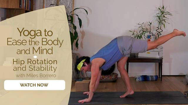 thumbnail image for Hip Rotation and Stability