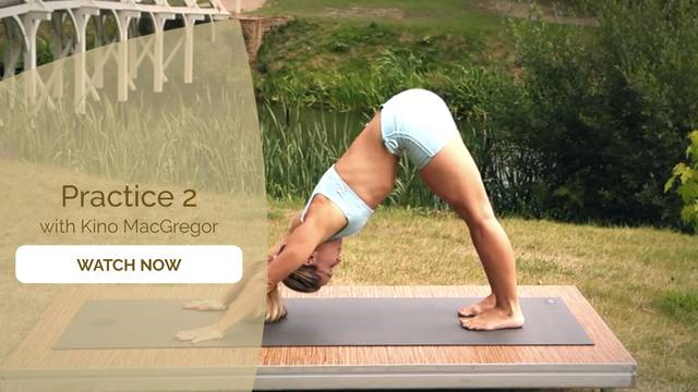 thumbnail image for Intro to Ashtanga I