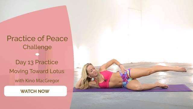 thumbnail image for Day 13 Practice: Moving Towards Lotus Pose