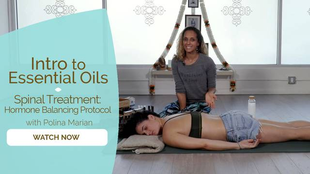 thumbnail image for Spinal Treatment: Hormone Balancing Protocol