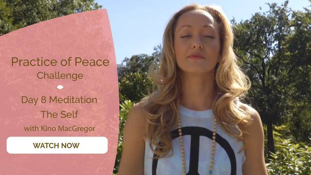 thumbnail image for Day 8 Meditation: The Self