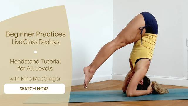 thumbnail image for Headstand Tutorial for All Levels
