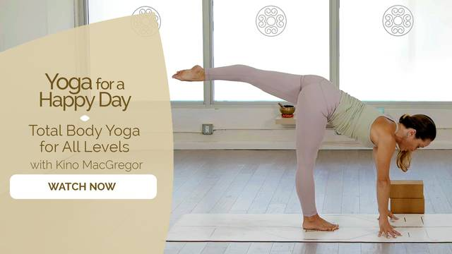 thumbnail image for Total Body Yoga for All Levels