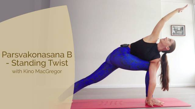 thumbnail image for Parsvakonasana B - Standing Twist with Angelique