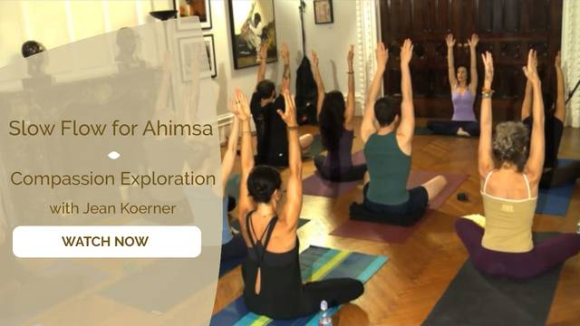 thumbnail image for Slow-flow for Ahimsa Exploration