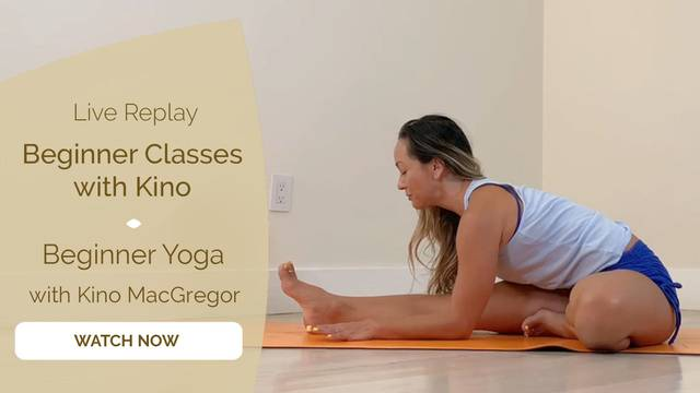 thumbnail image for Accessible Beginner Yoga with Kino MacGregor